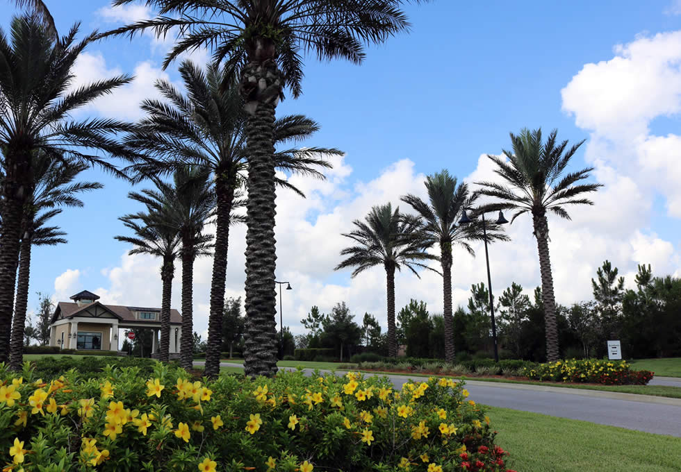 community-landscaping-naples